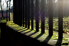 Sun & shadows (Mrs S.A) Tags: game nature shadows pre winner railings gamewinner nikond40 pregamewinner
