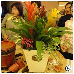 鳳梨旺旺旺發財 (6)
