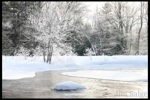 The Scene...Hoar Frost on the Lamprey River