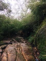 IMG_9142 (Seif Sallam) Tags: travel vietnam sapa fansipan hiking trekking