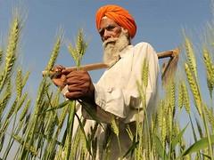 ,     (Punjab News) Tags: punjabnews punjab news government