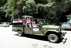Jeep tour in the Tijuca's Florest