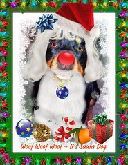 Happy Holidays from Santa Dog ; ) (FurBabyLuv *Finally back Online) Tags: