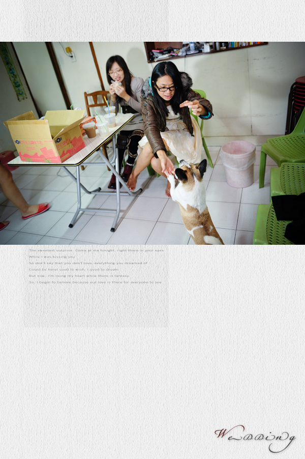 20101113book01