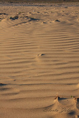 Waiting for you to walk on (blerta0235) Tags: beach sand julio iglesias hapa jete elamor shetitje gjurme