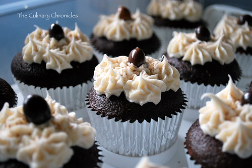 Chocolate Espresso Cupcakes with Mocha Buttercream topped with Chocolate Covered Espresso Beans
