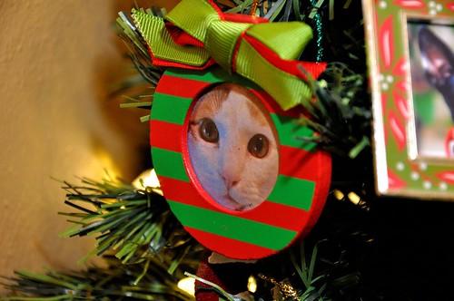Felix's Ornament