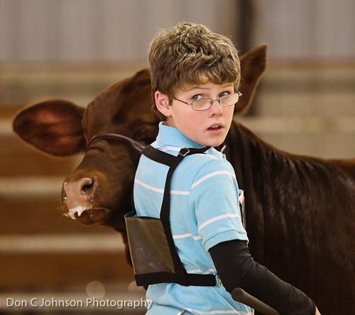 Terrell FFA Holiday Heifer Show-2218