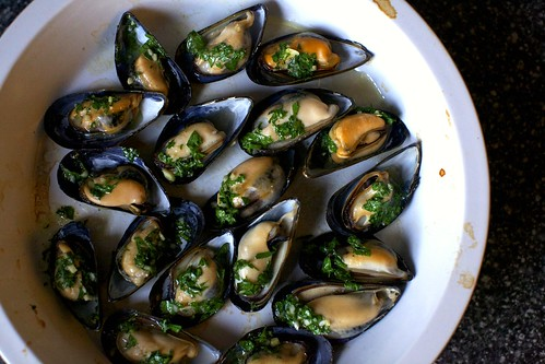 broiled mussels | smitten kitchen
