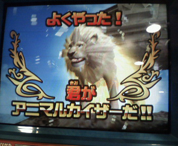 holy Lion3
