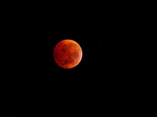 Eclipse Lunar 2010