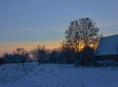 Zonsondergang Rijksstraatweg (Stephan van Krimpen) Tags: winter sunset snow cold zonsondergang utrecht sneeuw hdr 2010 koud rijksstraatweg