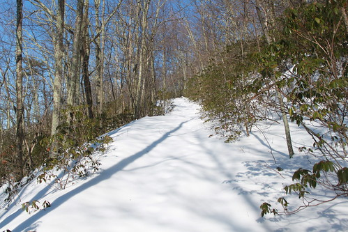 Kelly's Knob - Pristine Trail