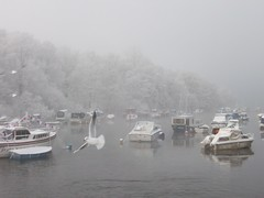 Balloch: Birds and Boats in Motion (stuartpaterson) Tags: park city uk greatbritain mist snow castle ice water fog scotland boat town scenery frost ship unitedkingdom britain snowy scenic royal scottish scot gb civic rowboat british loch icy lomond steamer brit balloch lochlomond cameronhouse silohette wintersun wintery luss secnic maidoftheloch icesheet lowwintersun cameronhousehotel scotlandwintersnow