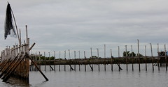 Baklad (Jo Mari Montesa) Tags: fish net digital pen canon eos fishing philippines bulacan rivers obando 550d baklad