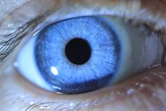 blue macro eye patterns supermacro contactlens