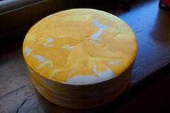 sarong (AS500) Tags: yellow disc sarong