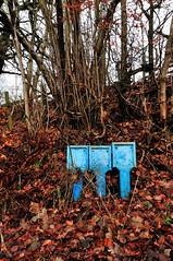 Blue Hydrants (sevenphoto) Tags: trees fern overgrown forest hydrant landscape scotland moss woods damp hydrants clydevalley crossford wwwsevenphotoeu