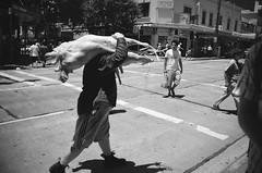 Aussie Streets' (H.M.Lentalk) Tags: life street people white black streets zeiss t person community oz 28mm australian documentary australia m carl aussie ikon f28    urbanlife  humanities biogon zm  hmlenstalk