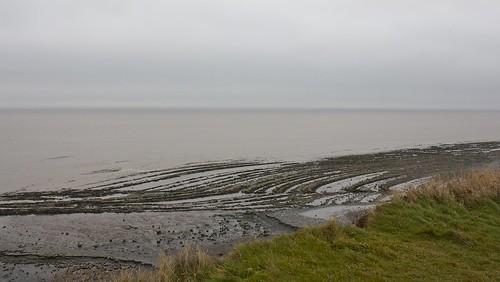 Fossil beach, Kilve