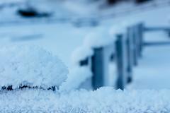 Patatine fritte (Nicol Paternoster) Tags: snow blur macro closeup 50mm crystals bokeh neve flickraward flickrawardgallery