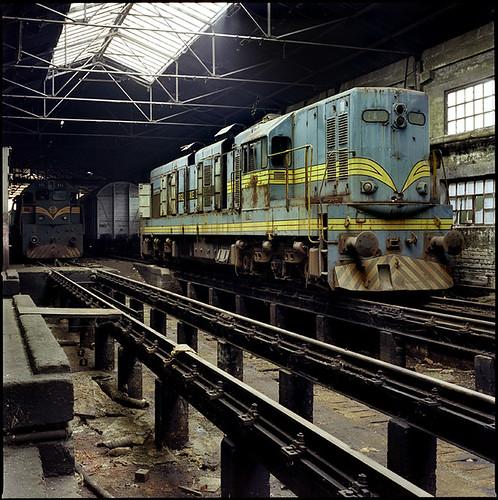 Train Hospital