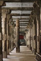 Mandappam (revatechnic) Tags: travel temple pillars southindia mannargudi rajagopalaswamytemple