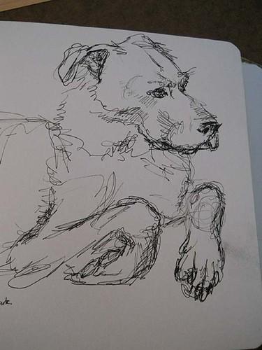 w_2011-01-09_noble-dog