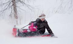 Aktiviterer i snøen - aking er moro for store og små barn