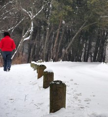 walking the edge (christiaan_25) Tags: road trees winter red woman white snow walking woods bright jacket edge frame serendipity snowfall unexpected thankyouforwearingred betterthanplanned