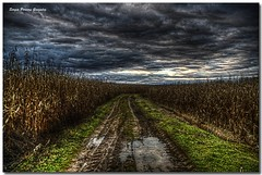 On the road to nowhere (sergio.pereira.gonzalez) Tags: photoshop landscape spain champs paisaje espana campo paysage espagne hdr villar castillayleon photomatix tonemapping canon400d sergiopereiragonzalez