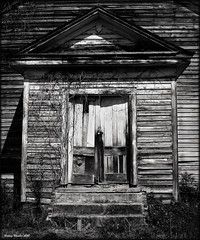Withered Doors (History Rambler) Tags: wood old bw abandoned church rural vines doors south steps northcarolina southern weathered simple locked decayed edgecombecounty