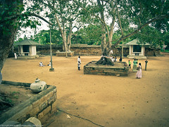 Территория храма Дерева Будды