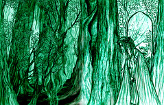 Durans Wood (RebeccaETripp) Tags: trees forest woodland woods king dream prince elf fairy illusion ethereal knight underworld trippy psychedelic faerie glade elfin realm elven