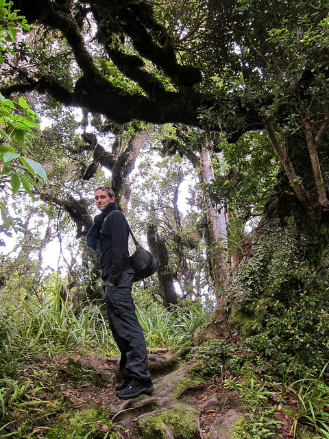 Hiking To Taranaki