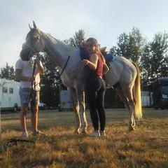 Preparados para el domingo!! #cuadraelalisal #campeonatodelmundo #negrepelisse #horseriding #horses #worldchampion #angelateniarazon #Hidalgo