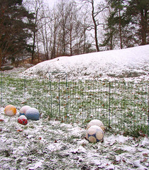 my neighbours dogs footballs (Per Ola Wiberg ~ Powi) Tags: november winter snow fence sweden sverige ohhh hwa 2010 footballs naturegroup photohobby eker wrangels flickrstars flickraward diamondstars flckrhearts exemplaryshotsflickrsbest shiningstar beautifulshot grouptripod flickrpopularphotographer brilliantphotography comefromlandandsea phoddstica addictedtonature fotbollar mygearandme amazingandperfect ddsnet