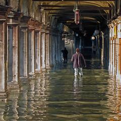 venezia - acqua alta (Zaporogo) Tags: san marco alta acqua venezia galleria acquaalta
