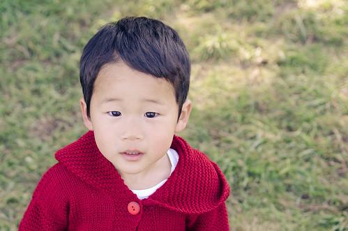 kelly_sweater-3