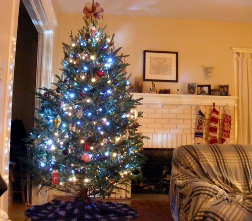 The 2010 ChristmasTree. acnatta/Flickr