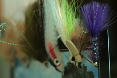 IMG_9832 (Joseph Sass) Tags: color flies flyfishing lifeontheflyoutfitters