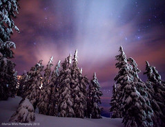 Winter's Night (Darren White Photography) Tags: nightphotography winter snow nature clouds canon stars pacificnorthwest wilderness mounthood highiso earthandspace darrenwhite darrenwhitephotography 5dmkii bestnewcomer competition:astrophoto=2011