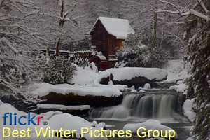 winter pictures group