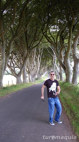 Dark Hedges - Ballymoney - Irlanda do Norte