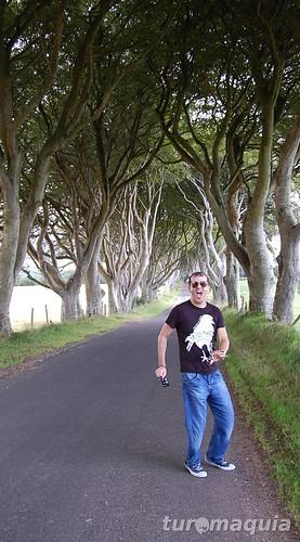 Dark Hedges - Ballymoney - Irlanda do Norte