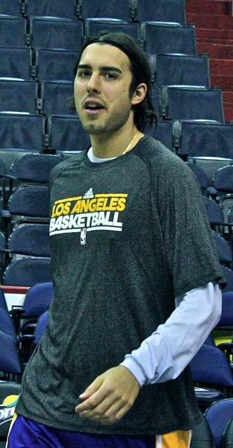 sasha vujacic, los angeles lakers, truth about it, washington wizards