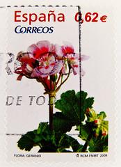 Selo Espana 62c € 0.62 timbre stamp Spain Espania Spanien Briefmarke francobollo Correos 0,62€ flower Blume 西班牙 邮票 poštanske marke Španjolska frimærker spanien Briefmarken poštovní známky razítka Španělsko timbres espagne γραμματόσημα Ισπανία الطوابع البر (stampolina, thx ! :)) Tags: flores verde green postes spain espanha stamps vert stamp espana porto grün timbre postage franco spanien spagna selo marka sellos スペイン 绿 pulu hiszpania briefmarke francobollo timbres ispanya spanyolország timbreposte bollo španělsko зелёный 切手 timbresposte spanyol 스페인 испания марка 集邮 postapulu jíyóu маркаевропа yóupiàoōuzhōu