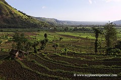 Bali experience : Amed terraces (My Planet Experience) Tags: trip travel vacation bali holiday tourism indonesia landscape photography photo asia southeastasia tour place rice image pics terrace sightseeing visit icon location tourist journey destination asie sight traveling visiting exploration touring riceterraces balinese baliisland amed indonsie asiesudest