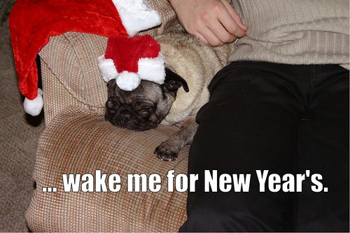 wake me for new years