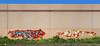 Dment, Skine (funkandjazz) Tags: sanfrancisco california graffiti ao tge jurne skine dment